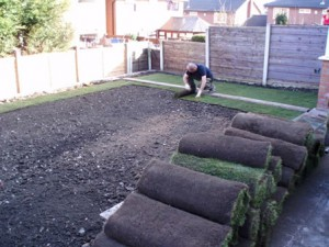 Man Laying Lawn Turf